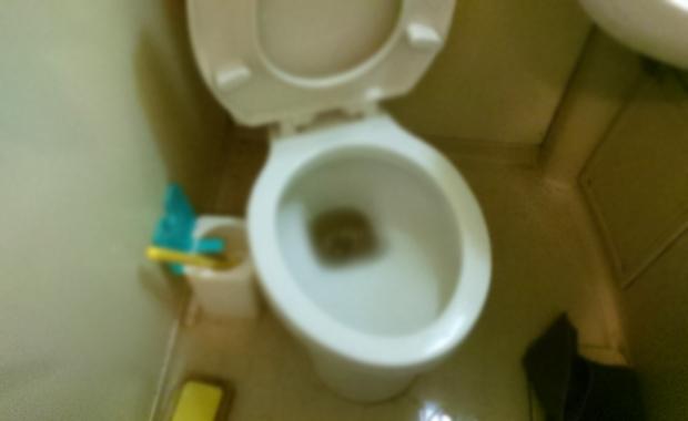 新宿区戸山 トイレのつまり